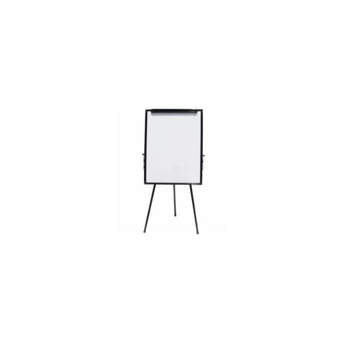 Generic Flip Chart with Stand